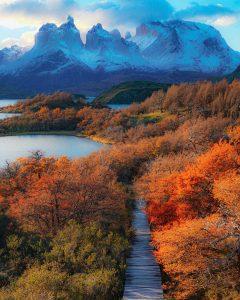 Otoño-Parque-Nacional-Torres-del-Paine