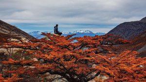 Otoño-Mirador-Britanico-Torres-Del-Paine